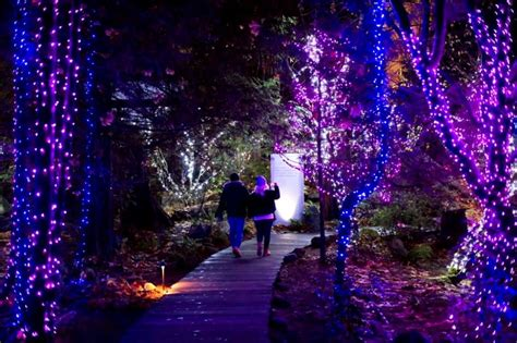 Why Canyon Lights Is The Ultimate Outdoor Winter Date Night