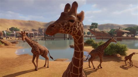 Planet Zoo review | PC Gamer