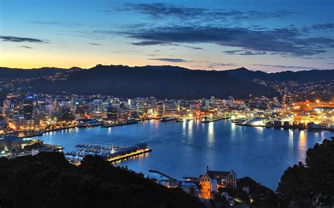 Why I'm Obsessed With Wellington, And You Should Be Too