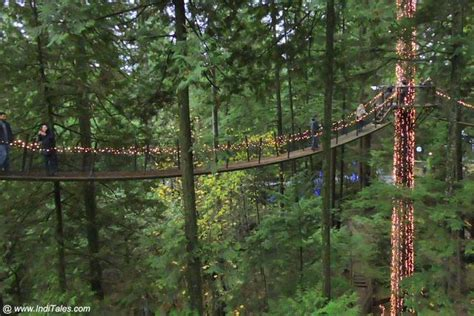 Stunning Capilano Suspension Bridge Park, Vancouver BC