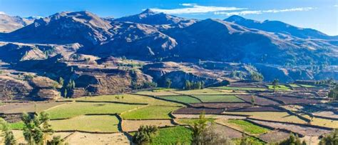 Colca Canyon Trek 2 Day - 2020 Updated Info - Peru Hop
