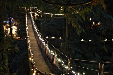 Capilano Suspension Bridge Treetops Adventure - Canyon Lig
