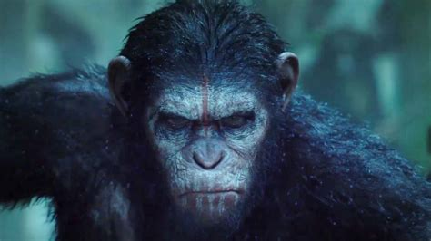 Watch Chimps Watch Dawn of the Planet of the Apes - IGN