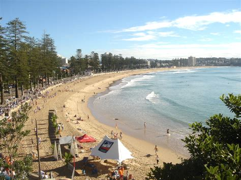 Manly – Wikipedia