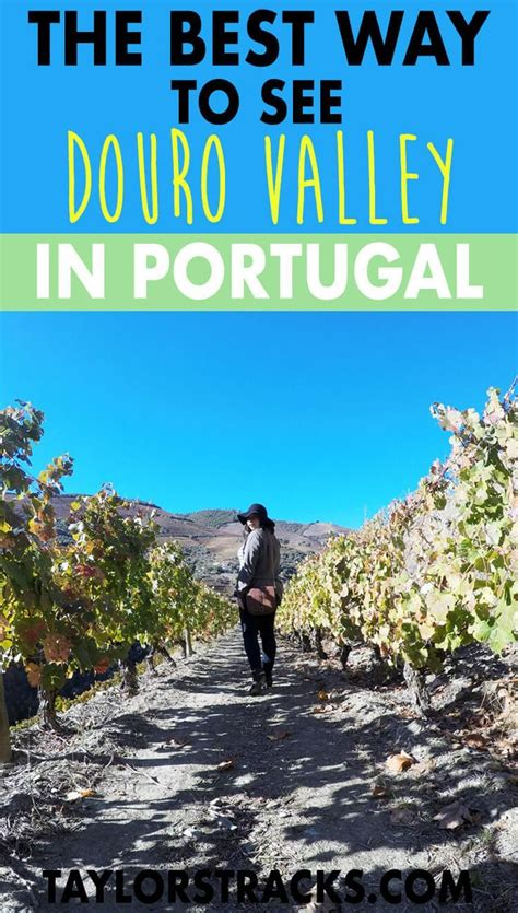 The Best Way to See Douro Valley in Portugal - Reizen
